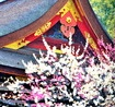 北野天満宮の梅花祭と野点