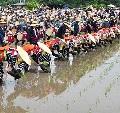 壬生の花田植の歴史とユネスコ世界遺産