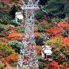 小豆島寒霞渓の紅葉 見ごろと交通アクセス