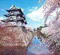 弘前公園の桜|散り際まで人々を魅了する