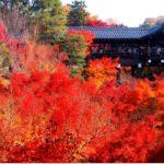 東福寺の紅葉 2017年見ごろとライトアップ 混雑状況と拝観料