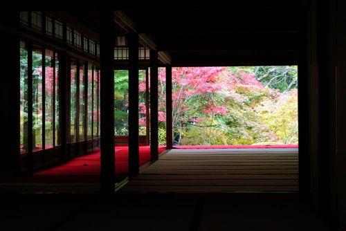 南禅寺の紅葉はいつが見ごろ 見どころとライトアップ アクセス