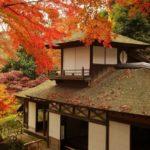 三溪園の紅葉見ごろとライトアップ園内見どころ