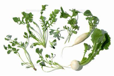 七草粥の由来とは?七草粥と春の七草に込められた意味