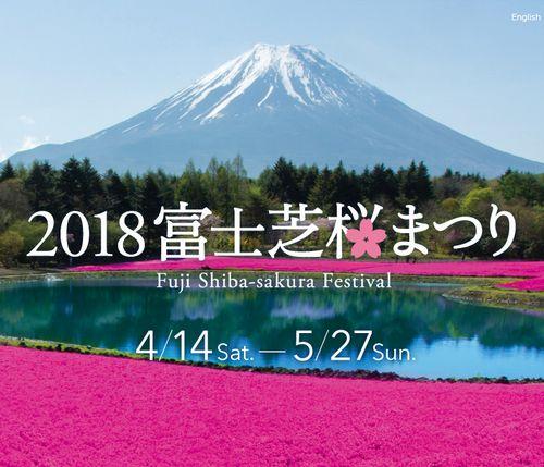 富士芝桜まつりの営業時間・交通アクセス・駐車場・入場料など